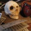 Julia Murakami | Anatomy of a fairy tale (skull)